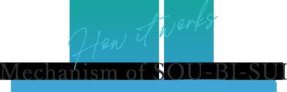 How it works Mechanism of SOU-BI-SUI